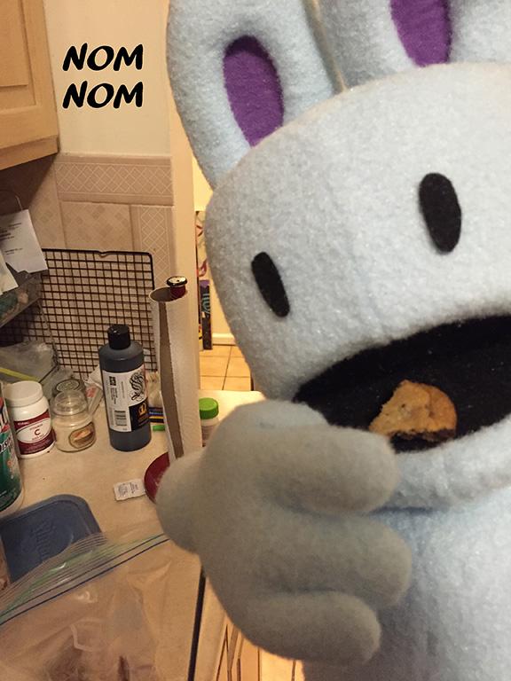 starbunnycookie